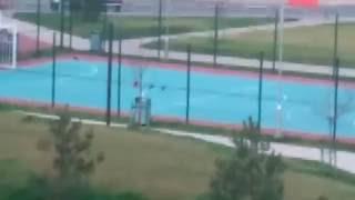 Голуби играют в футбол