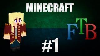 Minecraft - wildeem & FTB - Ep1 - Aloitus