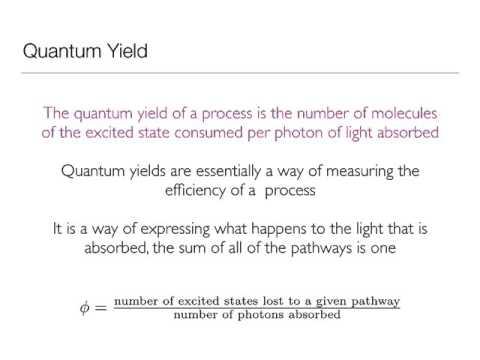 Quantum Yield Concept