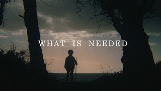 What Is Needed
