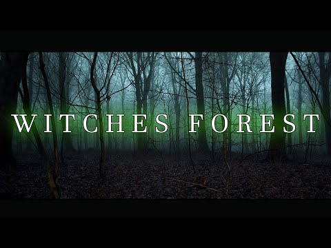 THE WITCHES FOREST | Full Movie