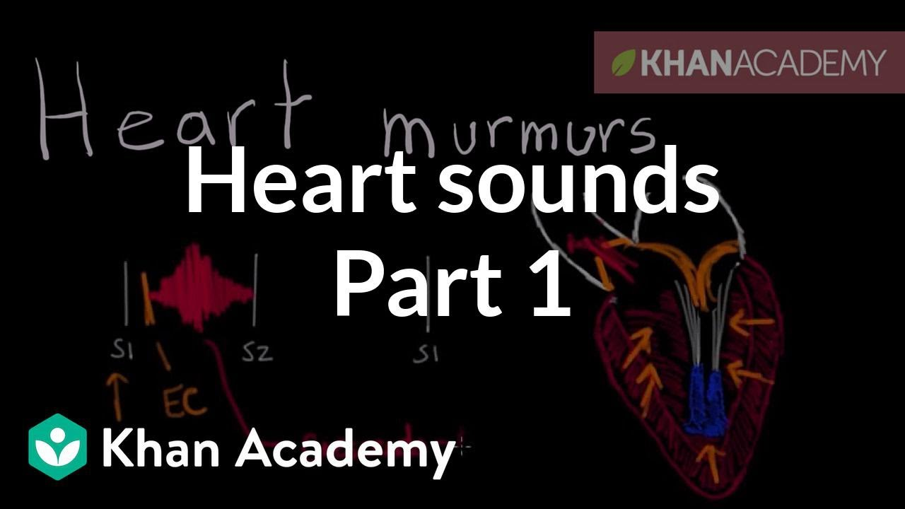 Systolic murmurs, diastolic murmurs, and extra heart sounds