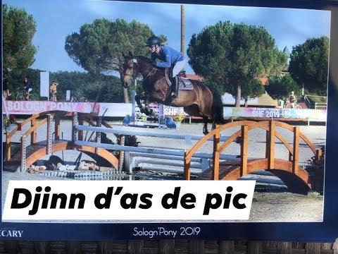 DJINN D\'AS DE PIC