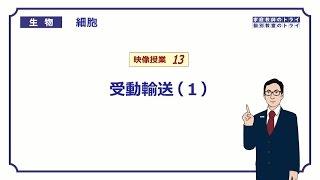 【高校生物】 細胞13 受動輸送(1)(11分)