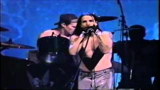 Red Hot Chili Peppers - My Friends (Live) (Subtitulado)