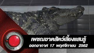 เพชฌฆาตสัตว์เลี้ยงแสนรู้ l ออกอากาศ 17 พฤศจิกายน 2562