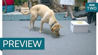 Can you train a dog to ignore cheese? - Me and My Dog: The Ultimate Contest | Episode 4 Preview