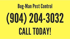 Pest Control Orange Park FL