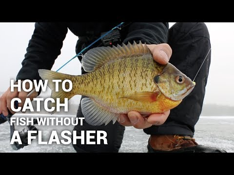 How to Catch Fish Without a Flasher on Ice- Ice Fishing