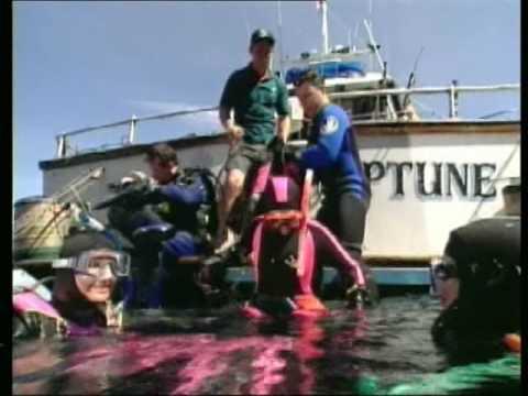 PADI Advanced Open Water Diver Course PT-Br (1/3)