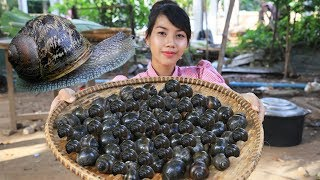Yummy cooking snail recipe - Cooking skill