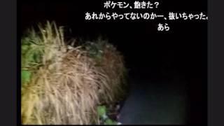 【心霊スポット】オカルトハンターSD 「女寄峠」1