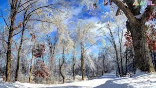 Antonio Vivaldi Le quattro stagioni: Inverno (4 season: Winter) Photo Gallery HD