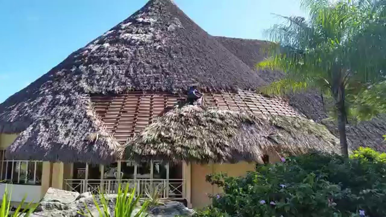 How To Install A Palm Leaf Roof Youtube