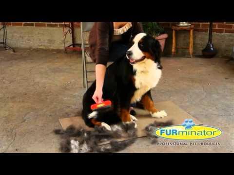 Furminator Burster til hunde