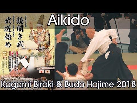 Aikido Demonstration - Kuribayashi T. - Mori T. - Oyama Y. - Suzuki T. - Kagamibiraki 2018