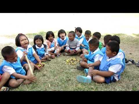 สพป ร้อยเอ็ด เขต 1 โรงเรียนชุมชนบ้านเมืองหงส์