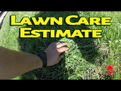 Lawn Care Estimate - Chemicals to Kill the Weeds in a Weed Infested Lawn