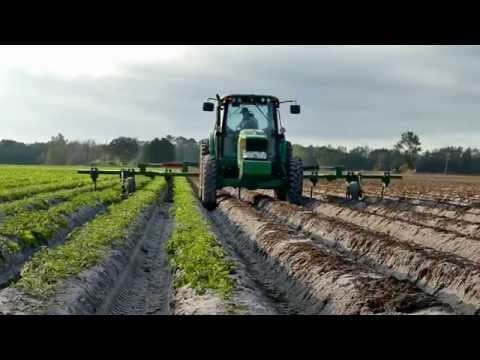 The Story of Florida Agriculture