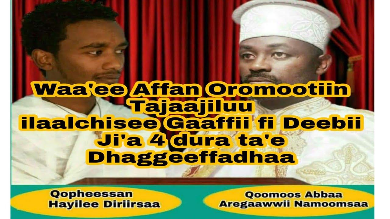 Gaaffii fi deebii dhimma Amantaa irratti Qoomoos Abbaa Aregaawwii Namoomsaa Waliin taasifame