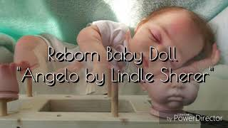 "Bambola Reborn Baby Doll ""Angelo by Lindle Scherer"""