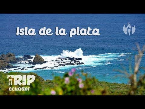:: Isla de la Plata:: TRIP ECUADOR PGR 7 T1