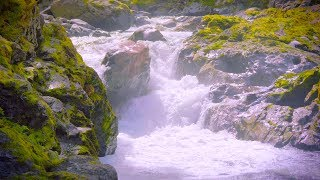 White Noise Sleep Waterfall Sounds | 10 Hours River & Water Sounds Ambience