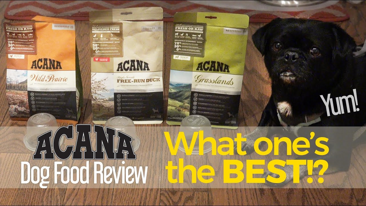 Do You Know Which Variety Of Acana Kilo Liked Best Dog Food Product