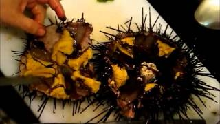 How to Open a Sea Urchin (Uni) 海胆
