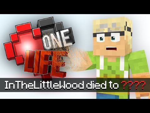 The Death Of InTheLittleWood - Minecraft:...