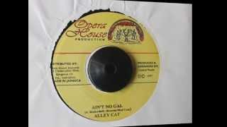 ALLET CAT - AIN