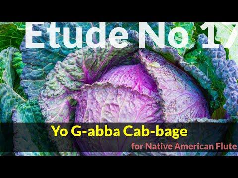 Native American Flute Etude No. 17 - Yo G-abba Cab-bage