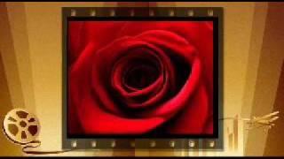 `````Himno al Amor`````Los 5 Latinos
