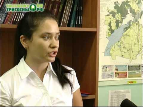 знакомство с города димитровграда