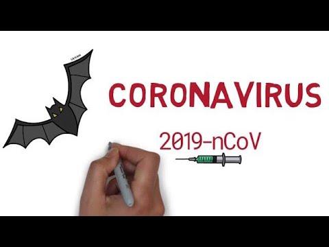 2019 Novel Corona Virus   Information   2019-nCoV