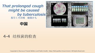 4-4 [Chinese]結核菌の検査