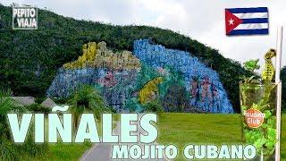 Qué hacer en VIÑALES, CUBA #5 - Tour del Mojito Cubano | Pepito Viaja