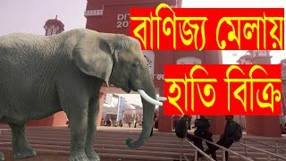 বাণিজ্য মেলায় হাতি বিক্রি | Bangla New Funny Video 2018 | Banoyat Fun o Yat EP 17 | Mojar Tv