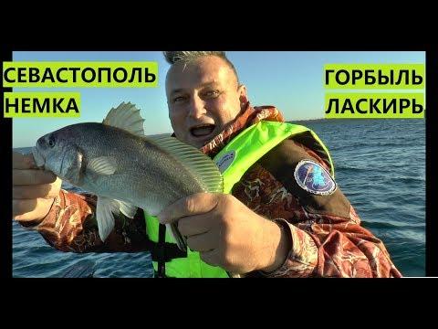 Рыбалка в Крыму.