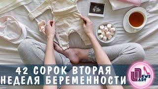 42 Сорок вторая неделя беременности  Forty second week of pregnancy