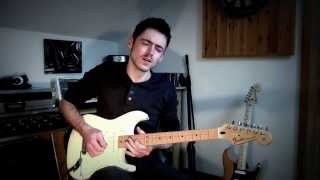Medley of Steely Dan guitar solos - Colm Lindsay