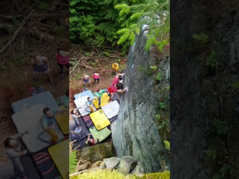 The Prow, Kyloe in the woods - E9 7a