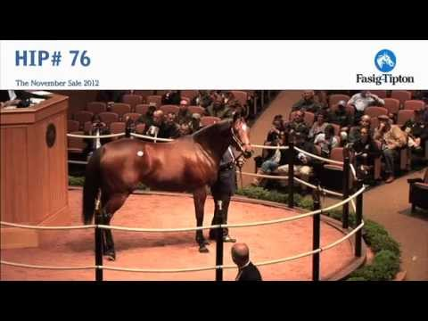 Havre de Grace sells for $10,000,000 at Fasig-Tipton Novembe