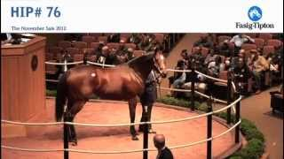Havre de Grace sells for $10,000,000 at Fasig-Tipton November Sale