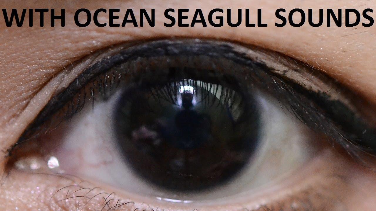 Black Eyes Biokinesis Subliminal Hypnosis (Ocean Seagull ...