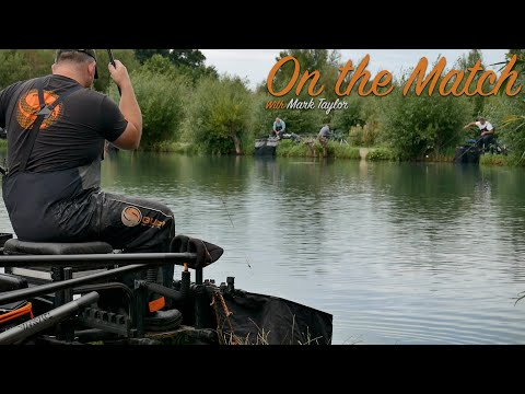 LIVE MATCH FISHING // Match Fishing // Open Match // Woodland View Fishery // Mark Taylor
