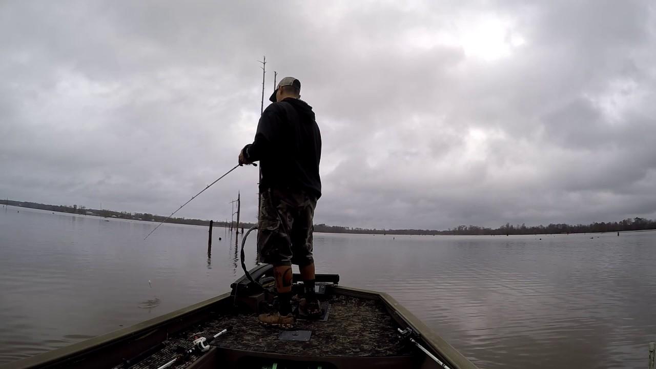 Toledo bend fishing guide following me youtube for Toledo bend fishing reports