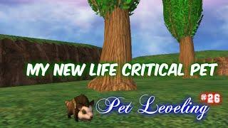 Wizard101 Life Pet