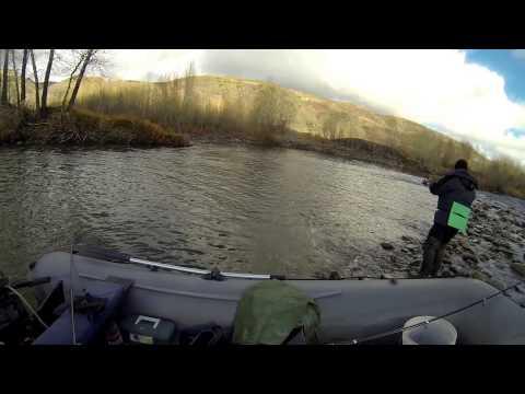 рыбалка на хариуса вко