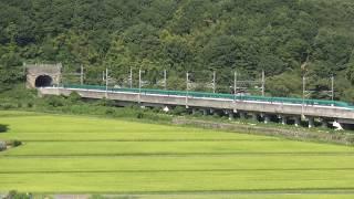 東北新幹線 新白河-那須塩原 はやぶさ・こまち20号 通過 2018.08.18